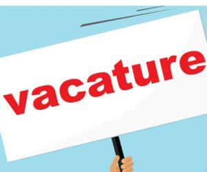 management vacatures limburg